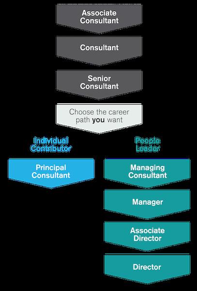 tm-career-path