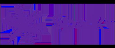 spark_new_zealand_logo604f45e2aab04da486fc3e899ce6877a